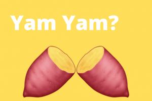 YAM:AMPL 的新變種