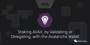 Avalanche 錢包 Staking 教程